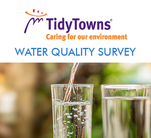 Tidy Towns water survey